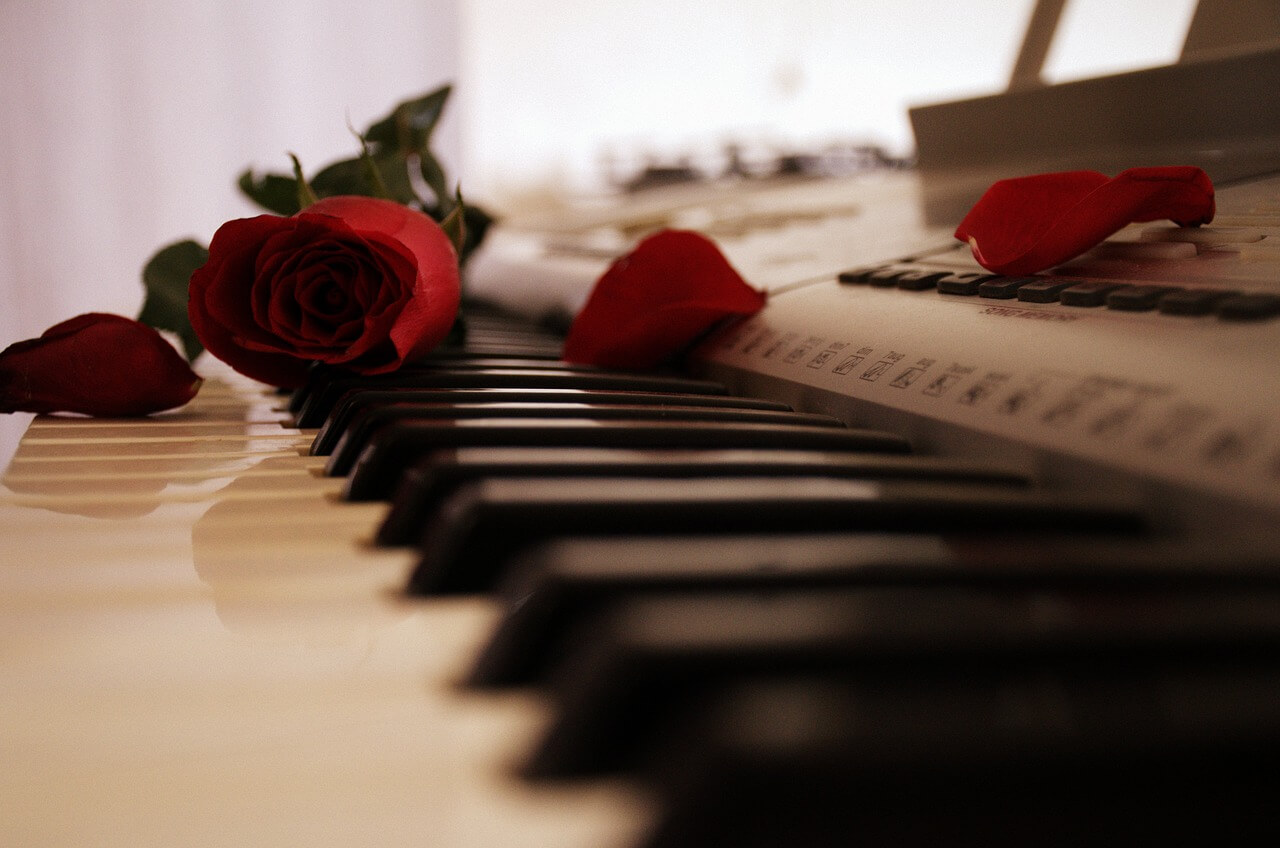 piano, rose, keyboard